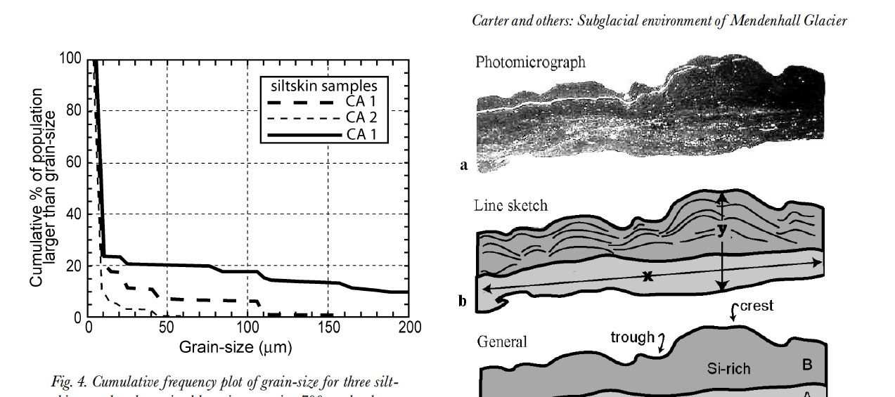Subglacial environment inferred from bedrock-coating siltskins